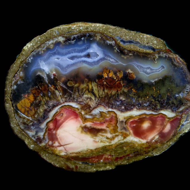 petrefied wood with agate
