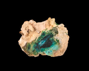 Petrefied Wood, blue opalized trunk with copper